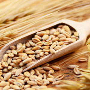 gluten & laktosefreie Lebensmittel